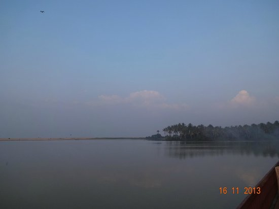 Estuary Island: view from beach area in the morning