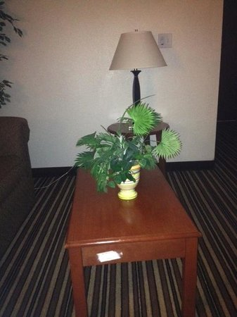 Super 8 Austin/Airport South: Coffee table with fake plant and the sticker they forgot to remove
