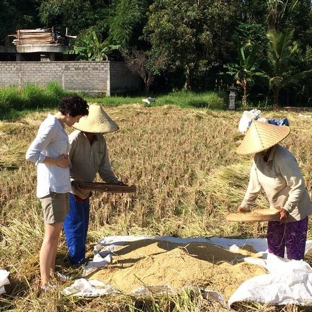 COMO Shambhala Estate : Rice field trekking
