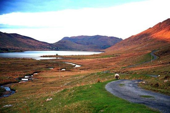Connemara National Park : На заказте