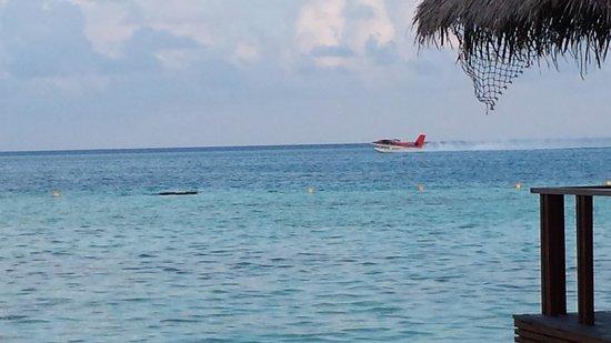 Medhufushi Island Resort : Lagoon and seaplane