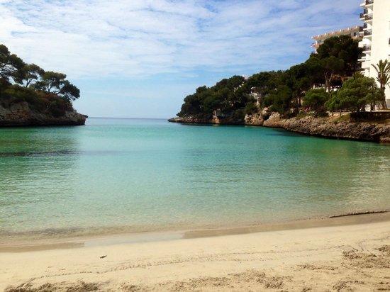 Ferrera Beach Apartments : Cala ferrera