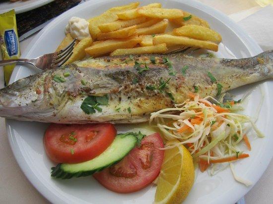 EVANNA: very nice fish!