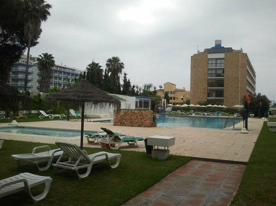 MS Alay Apartments: Zona del jardín con las piscinas