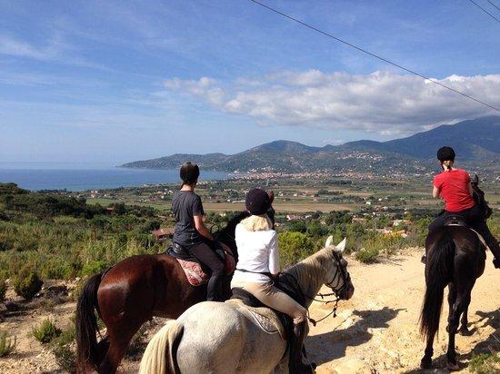 Agriturismo I Moresani, Passeggiate, escursioni e trekking a cavallo.