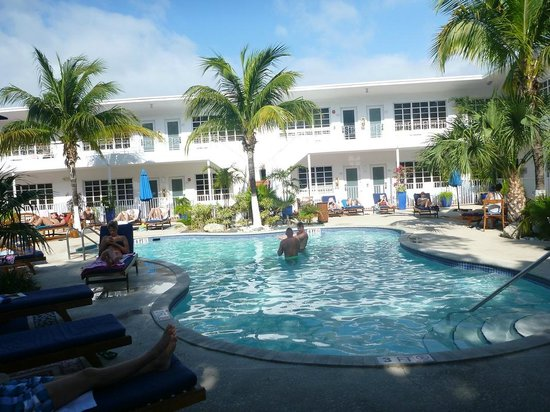 Tradewinds Apartment Hotel: Pool, nice but ruined by lack of kept pool rules and raudy guests.