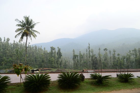 Linger at Balur Estate: View from room