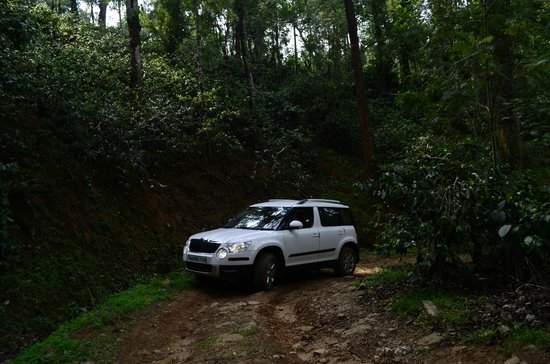 Linger at Balur Estate: Off roading in the coffee estate