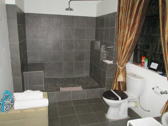 Rorke's Drift Lodge : What a bathroom!