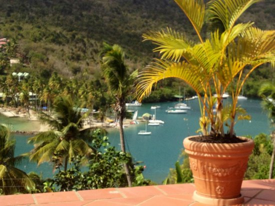Marigot Palms Luxury Caribbean Guesthouse and Apartments : View from terrace