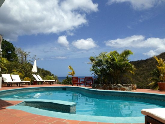 Marigot Palms Luxury Caribbean Guesthouse and Apartments: Pool area