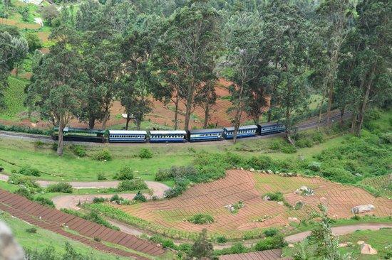 Nilgiri Mountain Railway : view from top