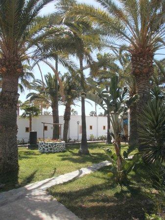 Rebecca Park Apartments: gardens