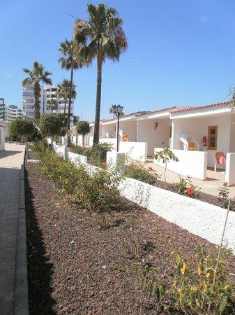Rebecca Park Apartments: bungalows