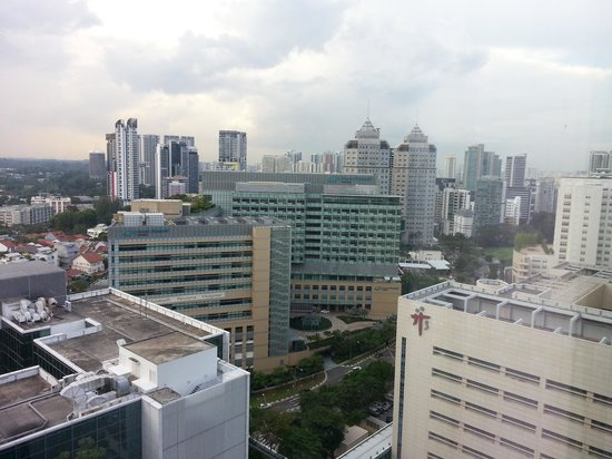 Oasia Hotel Novena, Singapore by Far East Hospitality: View From my room