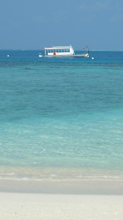 Diamonds Thudufushi : spiaggia