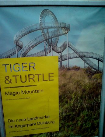 Fussg Nger Looping Picture Of Tiger Turtle Magic