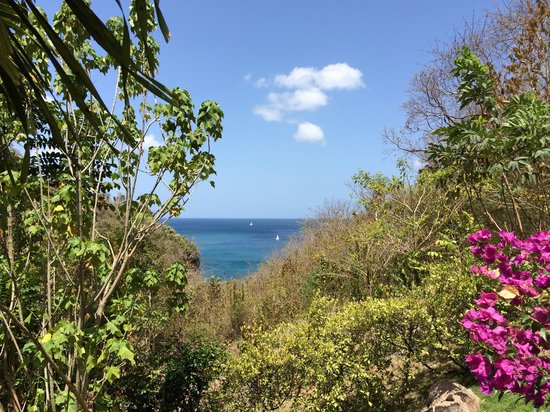 Villa Pomme d'Amour: Amazing view seen from villa