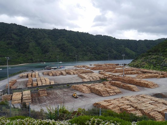 Queen Charlotte Sound: Huge lumber yard near Picton