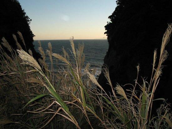 Picture of Enoshima Island, Fujisawa - TripAdvisor