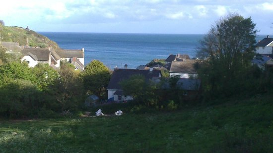 Cadgwith Cove Inn Restaurant : View walking into Cadgwith