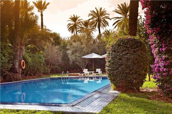 Palmeraie Village Residence: Jardin piscine Villa