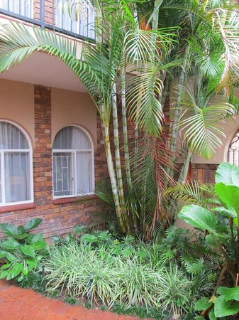 Glen Marion Guest House: Lush Garden with exotic palms