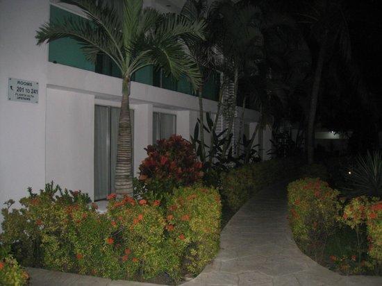 Hotel Los Cocos: le chemin menant aux chambres
