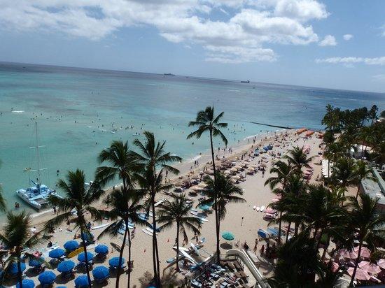 Outrigger Waikiki Beach Resort : paradise