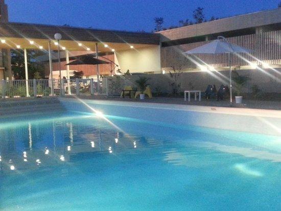 Adonis Hotel Avignon Sud : Piscine
