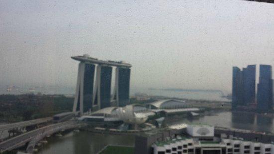Pan Pacific Singapore: View