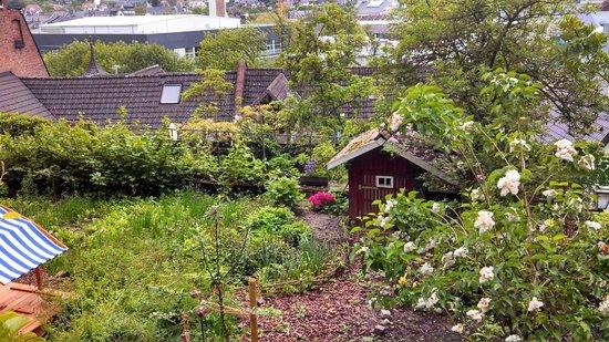 Die Pause: Hen garden