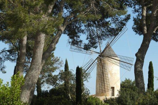Hilton Sa Torre Mallorca: Hotel grounds