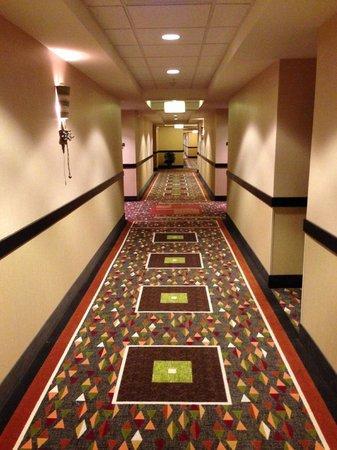 StayBridge Suites DFW Airport North: hallway in hotel