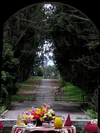 Hacienda La Cienega: Breakfast with view