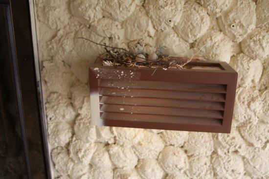 Herods Hotel Dead Sea: Room 7