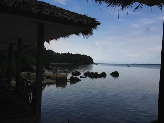 Bintan Spa Villa Beach Resort: View from room