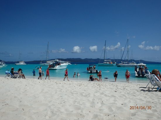 215 Painkillers at the Soggy Dollar Bar, White Bay, Jost Van Dyke April 30