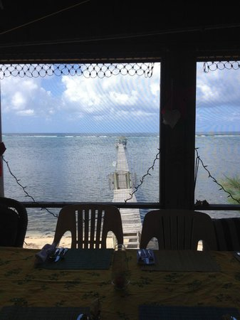 Captain Ron's Hideaway : THE VIEW FROM CAROL AND RON'S VERANDA