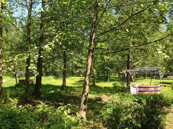Nizhniy Park