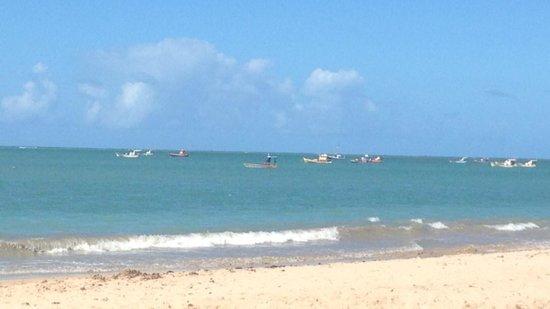 Frances Beach : praia linda.