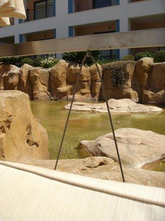 Hilton Vilamoura As Cascatas Golf Resort & Spa : Rock pools around swimming pool