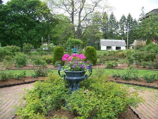 Boothe Memorial Park and Museum: Rose garden at Boothe Memorial Park, Stratford, Ct.