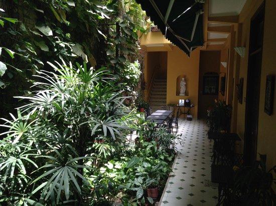 Casa La Fe - a Kali Hotel : Patio da Happy Hour e cafe da manha