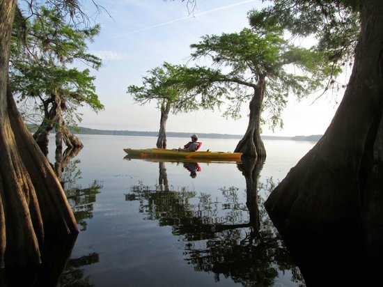 Central Florida Nature Adventures : Blackwater Lake, what a peaceful place