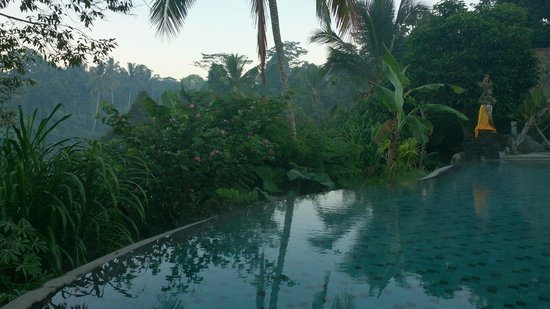 Puri Gangga Resort: Swimming pool early morning