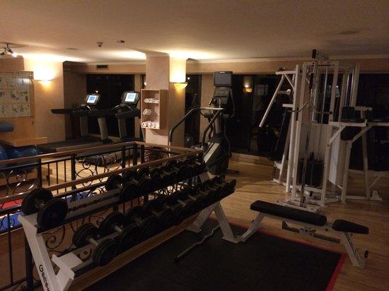 Sheraton Pretoria Hotel: Gym