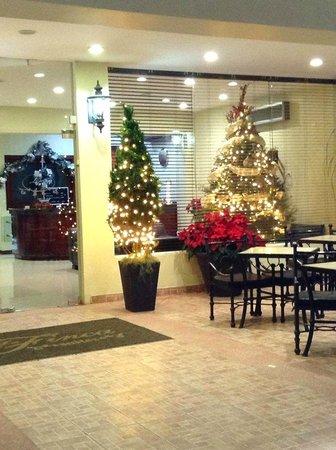 Hotel La Finca Suites: Navidad 2013