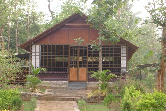 Ayuryogashram: Yoga Room