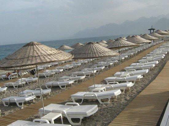 Hotel SU: beach